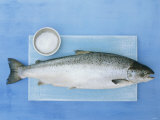 Salmon with a Dish of Sea Salt Photographic Print by Jan-peter Westermann