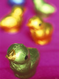 Small Colourfully Wrapped Chocolate Chickens Photographic Print by Francesca Yorke