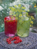 Redcurrant Liqueur &amp; Herb Oil with Dill on Table in Open Air Photographic Print by Ottmar Diez