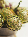 Fresh Artichokes Photographic Print by Debi Treloar