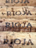 Wine Corks from Rioja Photographic Print by Frank Tschakert