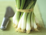 A Bunch of Spring Onions Photographic Print by Michael Paul
