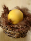 A Yellow Easter Egg in Small Basket with Feathers Fotografisk trykk av Elisabeth Cölfen