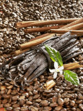 Coffee Beans, Vanilla Pods and Cinnamon Sticks Photographic Print by Karl Newedel