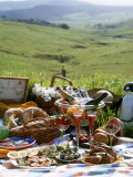 Picnic with Roast Quails and Salmon Photographic Print by Valerie Martin
