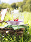 Picnic Basket with Picnicware and Radishes Photographic Print