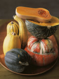 Assorted Squash Photographic Print by Beatriz Da Costa
