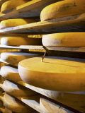 Comte Cheeses with Cheese Tester in Fort de Rousse Cheese Cellar Photographic Print by Joerg Lehmann