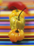 Four Peppers Photographic Print by Debi Treloar