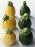 Small, Round, Yellow and Green Courgettes Photographic Print by Debi Treloar