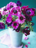 Purple Anemones in a Vase Photographic Print by Michael Paul