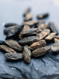 Tonka Beans (African Spice) Photographic Print by Stefan Braun