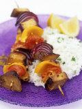 Smoked Tofu and Vegetable Kebabs on Rice Photographic Print