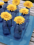 Yellow Gerberas in Blue Bottles Photographic Print by Elke Borkowski