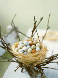 Sweet Easter Eggs in a Nest Photographic Print by Philip Webb