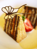 Piece of Japanese Chocolate Cake with Butterfly Photographic Print by Steven Morris