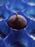 A Fig in Blue Plastic Holder Photographic Print by Jean Cazals