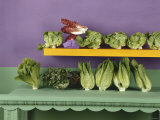 An Assortment of Lettuces and Salad Leaves Photographic Print by Luzia Ellert