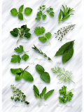 Various Herbs on Marble Photographic Print by Peter Howard Smith