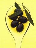 Black Olives in Olive Oil with Sprig of Olive Leaves Fotografisk tryk af Marc O. Finley