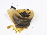 Filter Paper with Coffee Grounds Photographic Print by Anita Oberhauser