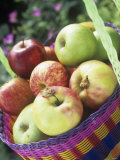 Apples (Granny Smith and Gala) in a Basket Photographic Print by Linda Burgess