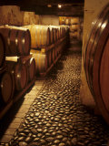 Barrique Cellar in Abbazia Di Rosazzo, Collio, Friuli Photographic Print by Hans-peter Siffert