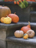 Pumpkins on Stairs Photographic Print by Alena Hrbkova