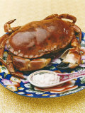 A Crab with Dip Photographic Print by Sara Danielsson