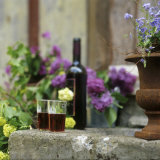 Red Wine Glasses & Red Wine Bottle on Stone Trough with Flowers Photographic Print by Christine Gillé