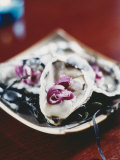 Oysters with Red Onions Photographic Print by Susanna Blåvarg