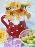 Flowers in Jug and a Bowl of Wild Apples Photographic Print by Linda Burgess