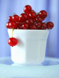 Redcurrants in a Small Pot Photographic Print by Franck Bichon