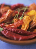 Dried Chili Peppers Photographic Print by Sheri Giblin