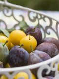 Damsons and Mirabelles in Wire Basket Photographic Print by Sara Deluca
