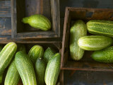 Braising Cucumbers in Wooden Boxes Photographic Print by Jan-peter Westermann