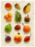 Exotic Fruit in Style of a Painting Photographic Print by Peter Howard Smith