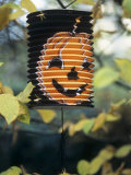 Paper Lantern with Printed Pumpkin Face Hanging in Tree Photographic Print by Alena Hrbkova