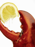 A Wedge of Lemon in a Lobster Claw Photographic Print by Peter Howard Smith