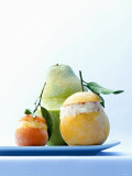 Citrus Fruit Granita with Tequila Photographic Print by Armin Zogbaum