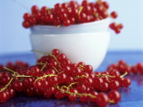Redcurrants, in and Beside Bowl Photographic Print by Dagmar Morath