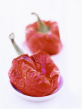Two Baked Peppers in Small Dishes Photographic Print by Stefan Braun