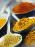 Various Spices on Spoons Photographic Print