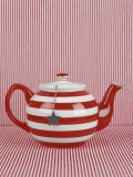 Striped Teapot with Tea Ball Photographic Print by Sara Danielsson