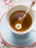 Chamomile Tea in Cup with Spoon Fotografie-Druck