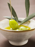 Pouring Olive Oil Over Olive Sprig with Green Olives Photographie