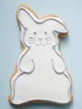 Easter Biscuit (White Easter Bunny) Photographic Print