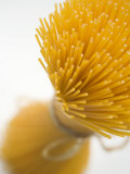 A Bundle of Spaghetti Photographic Print
