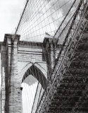 Under the Brooklyn Bridge Print by Phil Maier
