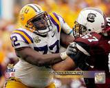LSU Tigers - Glenn Dorsey Photo Photo